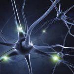 Workshop: Verlicht je Brein